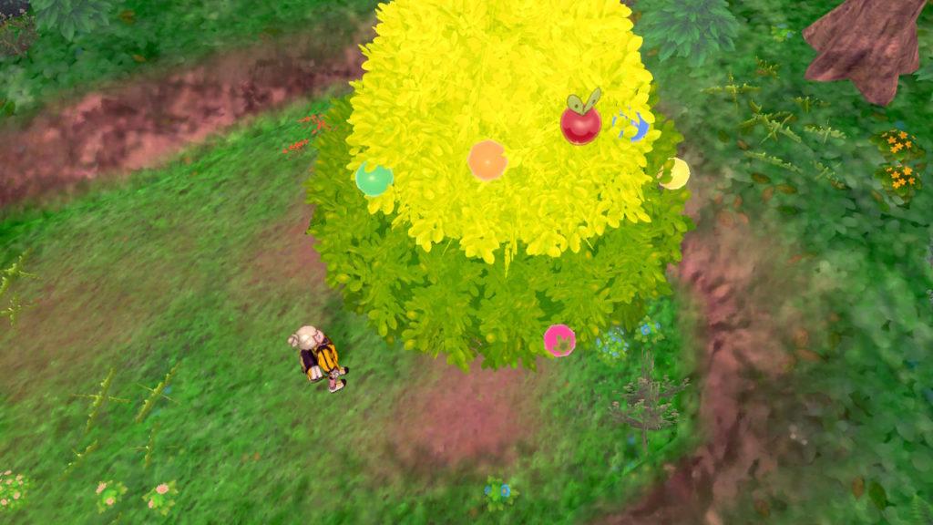 木の上のカジッチュ