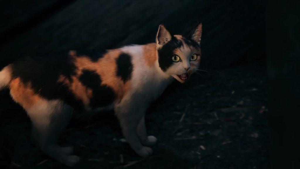 ウェッジのネコ
